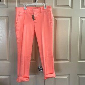 NWT loft pants